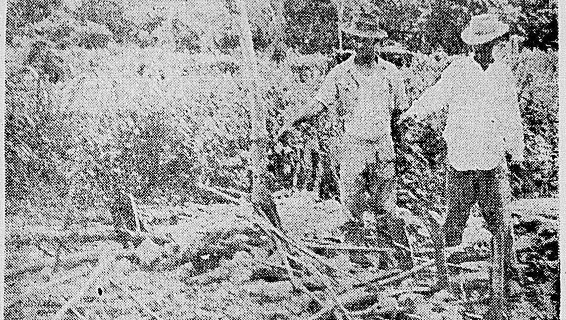 Lugares de Memória dos Trabalhadores #23: Pedra Lisa, Japeri (RJ) – Leonilde Servolo de Medeiros
