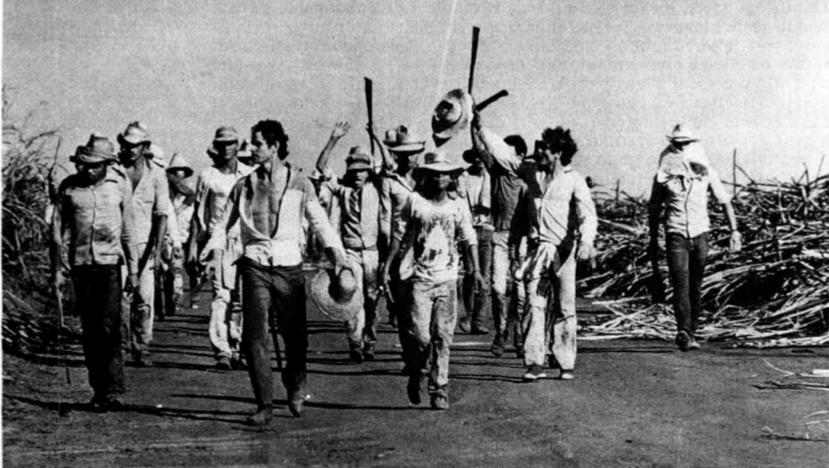 Lugares de Memória dos Trabalhadores #35: Trevo do Bairro Alto, Guariba (SP)  – Julia Chequer