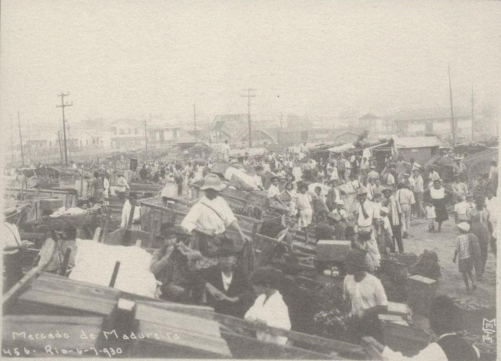 Chão de Escola #03: As reformas urbanas de Pereira Passos (1902-1906) e a formação dos subúrbios e da zona sul