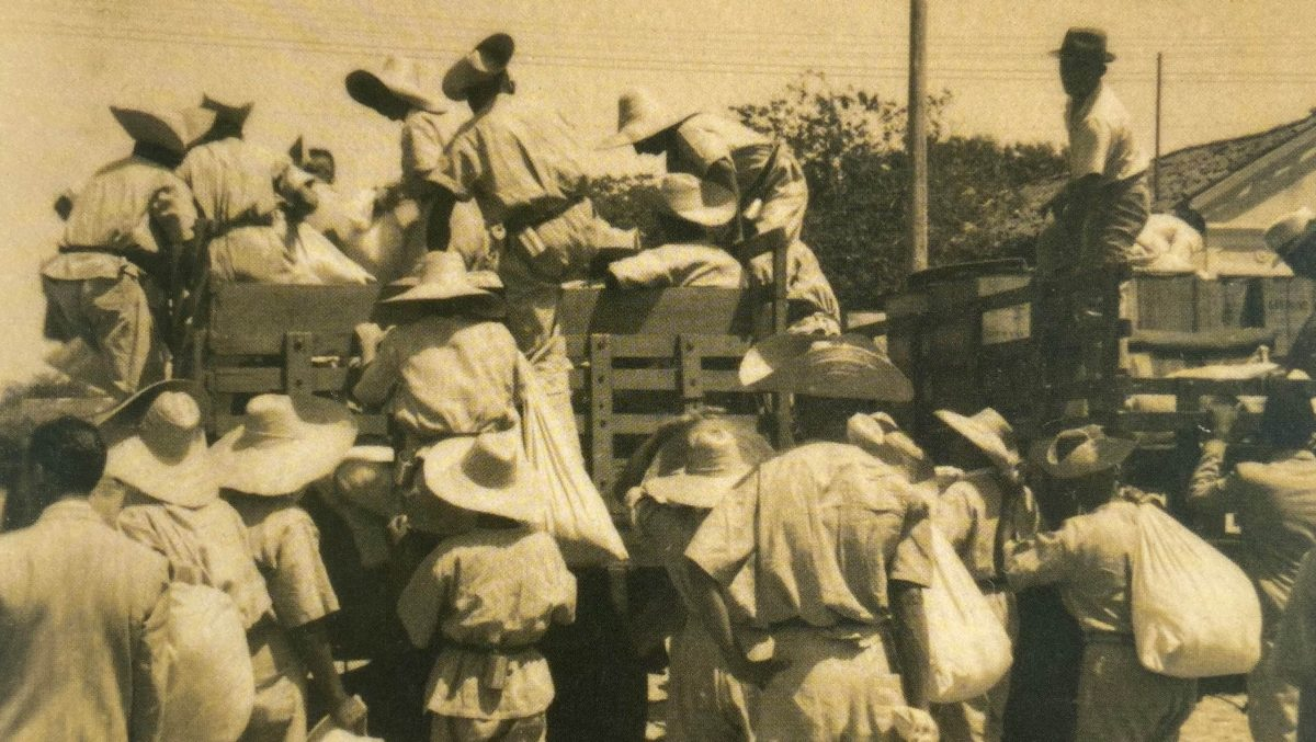 Lugares de Memória dos Trabalhadores #44: Hospedaria Tapanã, Belém (PA)  – Lara de Castro