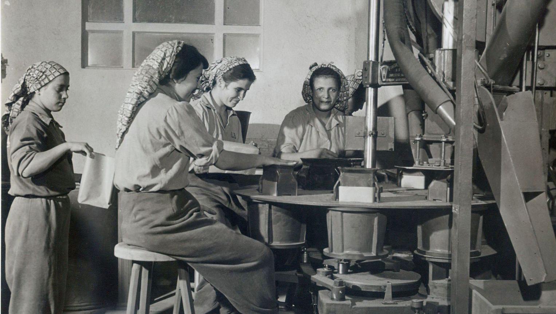 Chão de Escola #04: Aprender História na Formação Profissional: a relação entre a disciplina de História e o Ensino Médio integrado ao Técnico