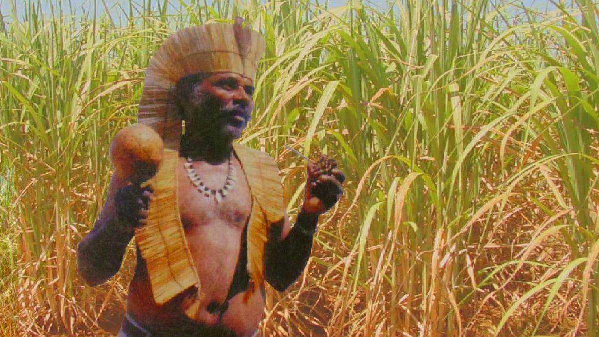 Chão de Escola #12: O trabalho na economia canavieira e a questão indígena